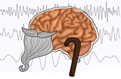 Brain slows down